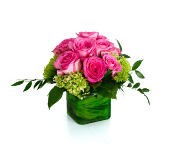 A Green Thumb in Nashville TN, Emma's Flowers & Gifts, Inc.