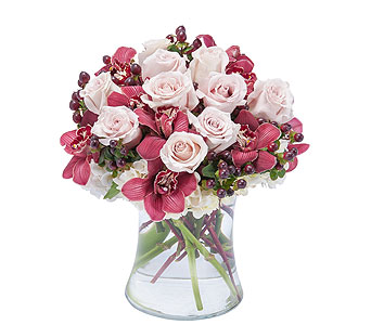 Sweet Plum Persuasions in Brockton MA, Holmes-McDuffy Florists, Inc 508-586-2000