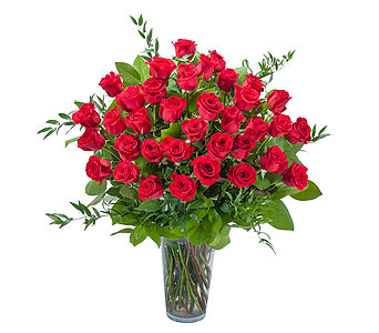 Room Full of Roses - 3 Dozen Roses in South Hadley MA, Carey's Flowers, Inc.