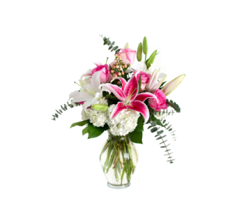 Bold and Beautiful in Nashville TN, Emma's Flowers & Gifts, Inc.