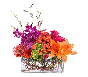 Powerfully Prismatic in Brockton MA, Holmes-McDuffy Florists, Inc 508-586-2000