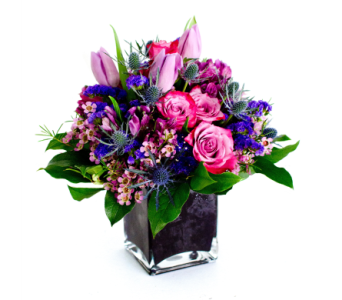 Violet Queen in Nashville TN, Emma's Flowers & Gifts, Inc.