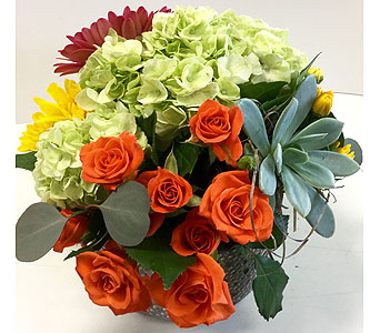 Trendy Treat in Northfield MN, Forget-Me-Not Florist