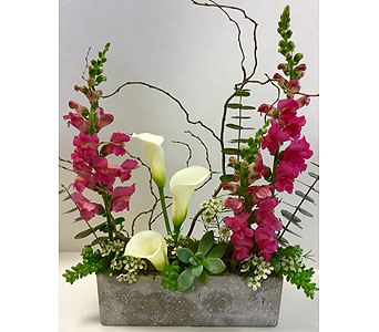 Modern Garden in Northfield MN, Forget-Me-Not Florist