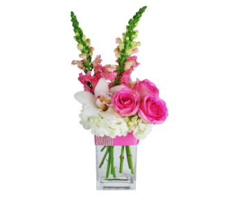 Pink Pallette in Hollywood FL, Al's Florist & Gifts