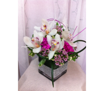 Treasured orchids in Grand-Sault/Grand Falls NB, Centre Floral de Grand-Sault Ltee