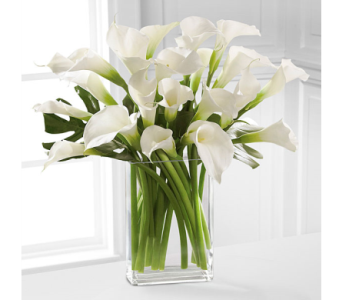 Simplicity Luxury Calla Lily Bouquet in Lewisville TX, D.J. Flowers & Gifts