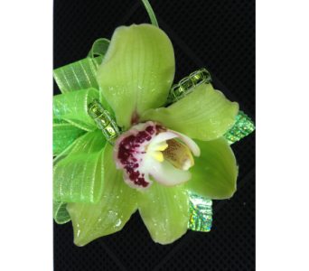 Single green cymbidium pin on corsage in Gainesville FL, Floral Expressions Florist