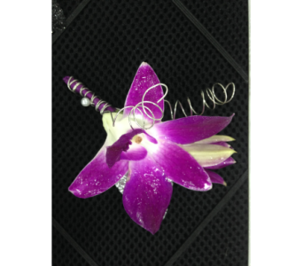 Purple dendrobium orchid boutonniere in Gainesville FL, Floral Expressions Florist