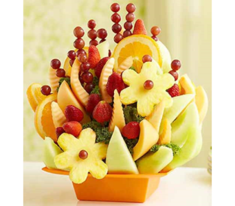 Fruit Splendor   in Mount Morris MI, June's Floral Company & Fruit Bouquets