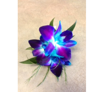 Blue Dendro Orchid Bout in Markham ON, Metro Florist Inc.