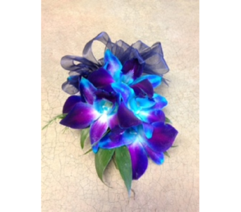 Blue Dendro Corsage/wristlet in Markham ON, Metro Florist Inc.