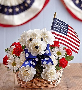 PATRIOTIC PUPPY in Bloomington IL, Beck's Family Florist