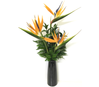 Stylish Black Vase with 3 Birds-of-Paradise in Wyoming MI, Wyoming Stuyvesant Floral