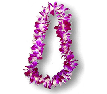 Single Bombay Orchid Lei in Mission Viejo CA, Conroy's Flowers