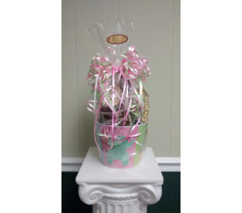 Baby Girl Welcome Gourmet in Athens GA, Flower & Gift Basket