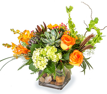 Splendid  in Fort Worth TX, TCU Florist