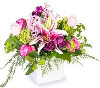 Alluring in Fort Worth TX, TCU Florist