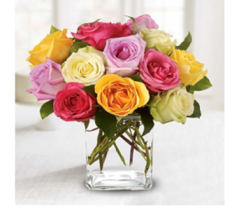 National Rose Month Special in Indianapolis IN, George Thomas Florist