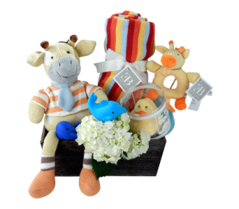 Baby Grand Gift Set  in Detroit and St. Clair Shores MI, Conner Park Florist