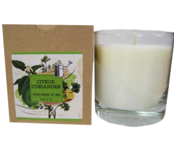 Creative Co-Op� Flair Candle - Citrus Coriander in Moorhead MN, Country Greenery