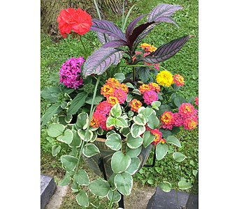 Outdoor Planter in Northfield MN, Forget-Me-Not Florist