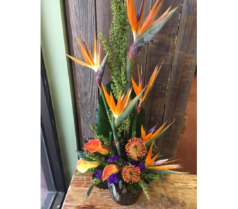 MAGIC MAN in Missouri City TX, Flowers By Adela