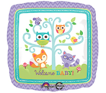 Welcome Baby-Owl in Jacksonville FL, Hagan Florist & Gifts
