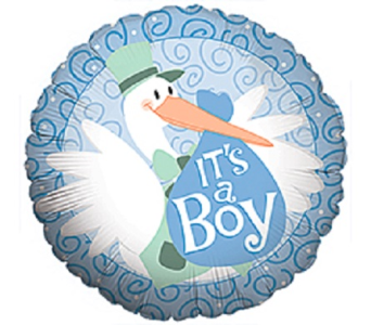 Baby Boy- Stork in Jacksonville FL, Hagan Florists & Gifts
