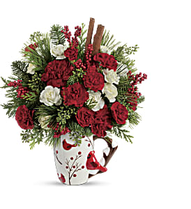 Send a Hug Christmas Cardinal by Teleflora in Bradford ON, Linda's Floral Designs