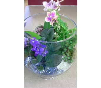 Garden Terrarium in Fairless Hills PA, Flowers By Jennie-Lynne