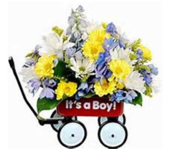 It's a Boy Wagon in Beaver PA, Snyder's Flowers