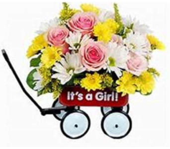 Its a Girl Wagon in Beaver PA, Snyder's Flowers
