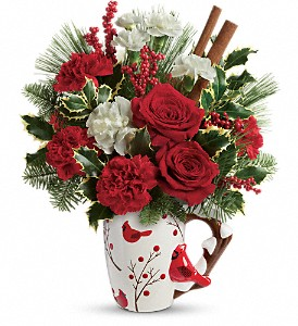 Send a Hug Wings Of  Winter by Teleflora in Milford OH, Jay's Florist