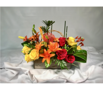 Modern Centerpiece in Clearwater FL, Hassell Florist