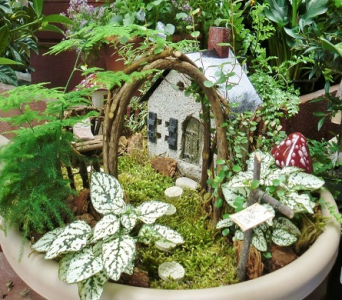 Fairy Garden in Fond Du Lac WI, Haentze Floral Co