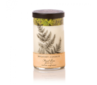 Botanist Candle- Royal Fern in Lakewood CO, Petals Floral & Gifts