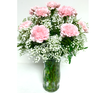 Dozen Pink Carnations & Baby's Breath - All-Around in Wyoming MI, Wyoming Stuyvesant Floral