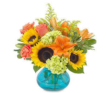 Sunshine Day in Schaumburg IL, Deptula Florist & Gifts