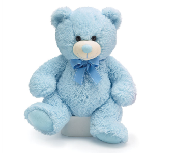 Blue Powder Puff Teddy in Fort Myers FL, Ft. Myers Express Floral & Gifts