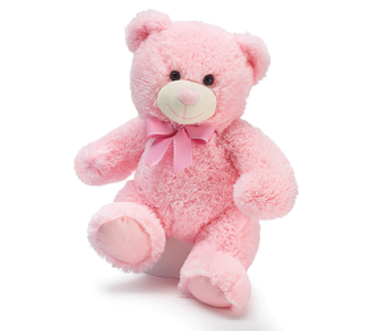 Pink Powder Puff Teddy in Fort Myers FL, Ft. Myers Express Floral & Gifts