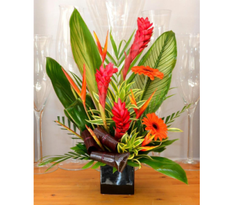 Tropical Treasure in Oakville ON, Margo's Flowers & Gift Shoppe
