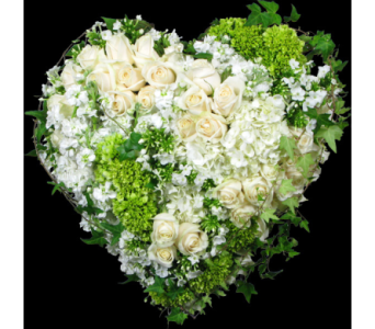Paradise heart in Wellington FL, Wellington Florist