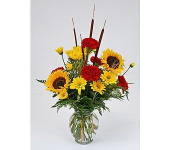 Brilliant Sunflowers in Indianapolis IN, Gillespie Florists
