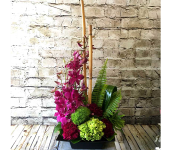 Zen Artistry in Wellington FL, Wellington Florist