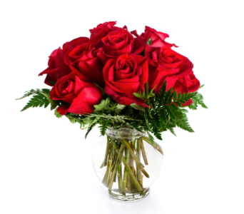 Alternate Dozen Rose Arrangement in Nashville TN, Emma's Flowers & Gifts, Inc.