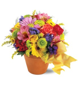 Teleflora's Fresh Blossom Potpourri in Jensen Beach FL, Brandy's Flowers & Candies
