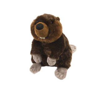 Beaver Stuffed Animal - 12