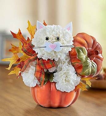 Fabulous Feline Fall in Round Rock TX, Heart & Home Flowers