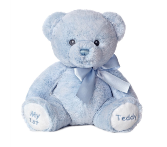 My 1st Teddy Baby Boy 12in in Ajax ON, Reed's Florist Ltd